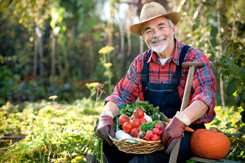 Exciting hobbies for seniors 1