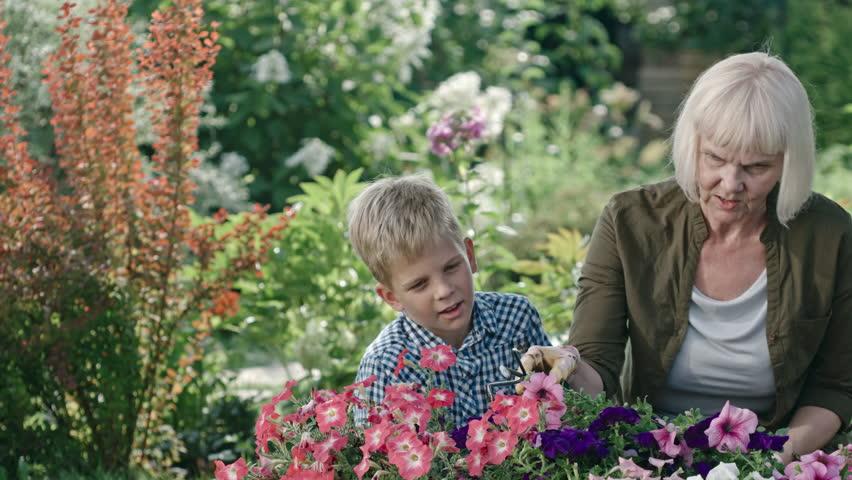 Fun Activities for Elderly and Their Grandchildren 1