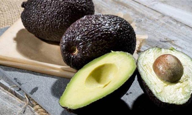 Health Benefits of Avocado for Seniors