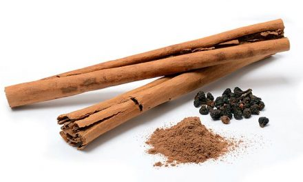 5 Health Benefits of Cinnamon for the Elderly