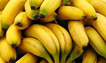 Health Benefits of Eating Bananas for the Elderly