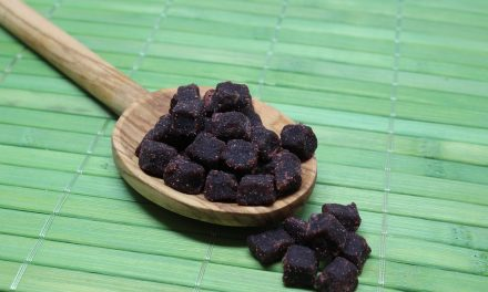 Health Benefits of Acai for Older Adults