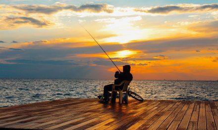 Top 4 Hobbies That Are Popular Among Seniors