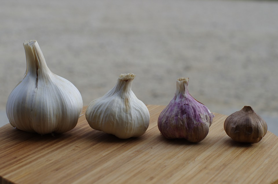 Health Benefits of Garlic for Seniors