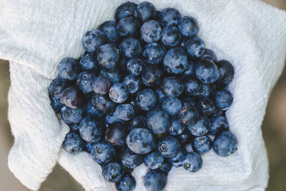 Health benefits of blueberries for older adults 1