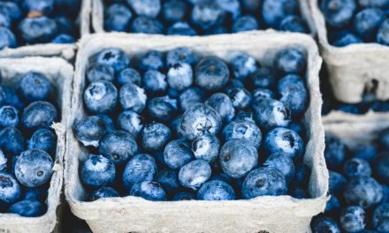 Health Benefits of Blueberries for Older Adults