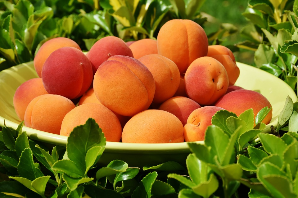 Health benefits of peaches for older adults 1
