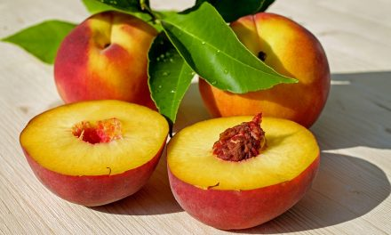 Health Benefits of Peaches for Older Adults