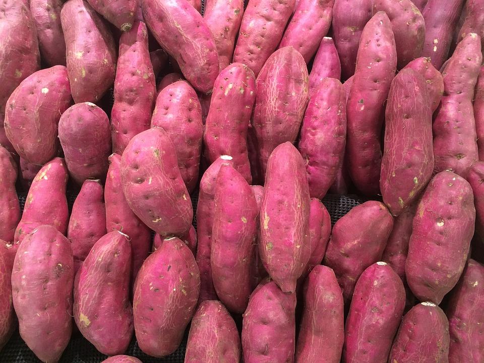 Health benefits of sweet potatoes for elderly 1