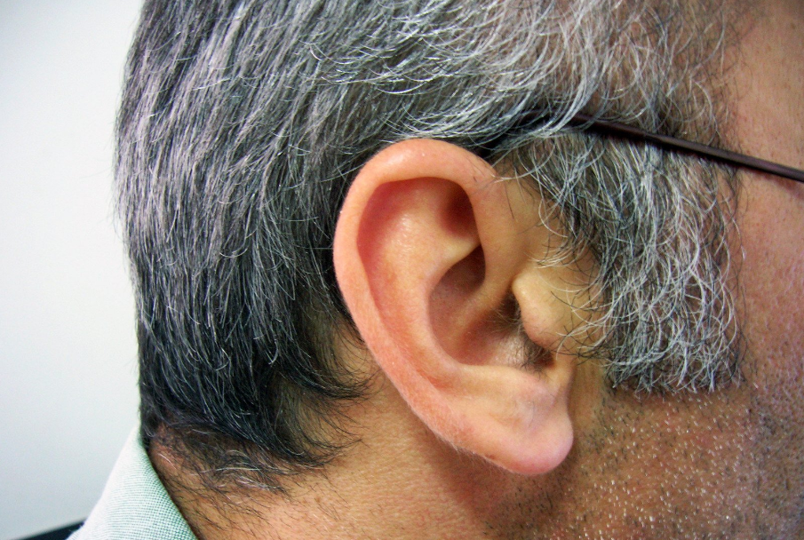 ways to ward off a hearing loss in seniors 1
