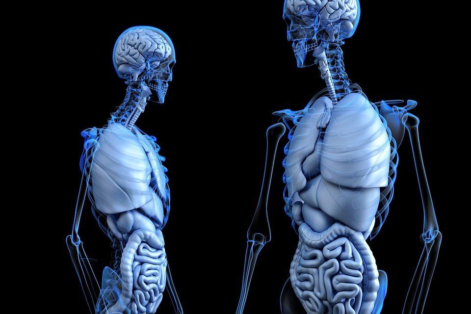 5 Symptoms of Liver Disease in Older Adults