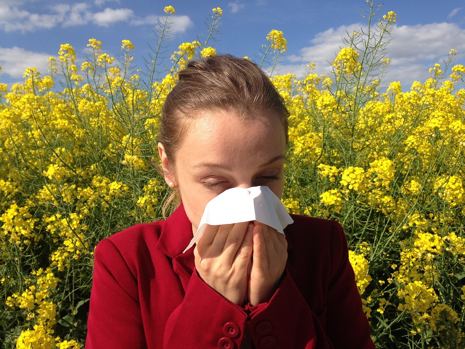 Best Ways to Stave off Seasonal Allergies 1