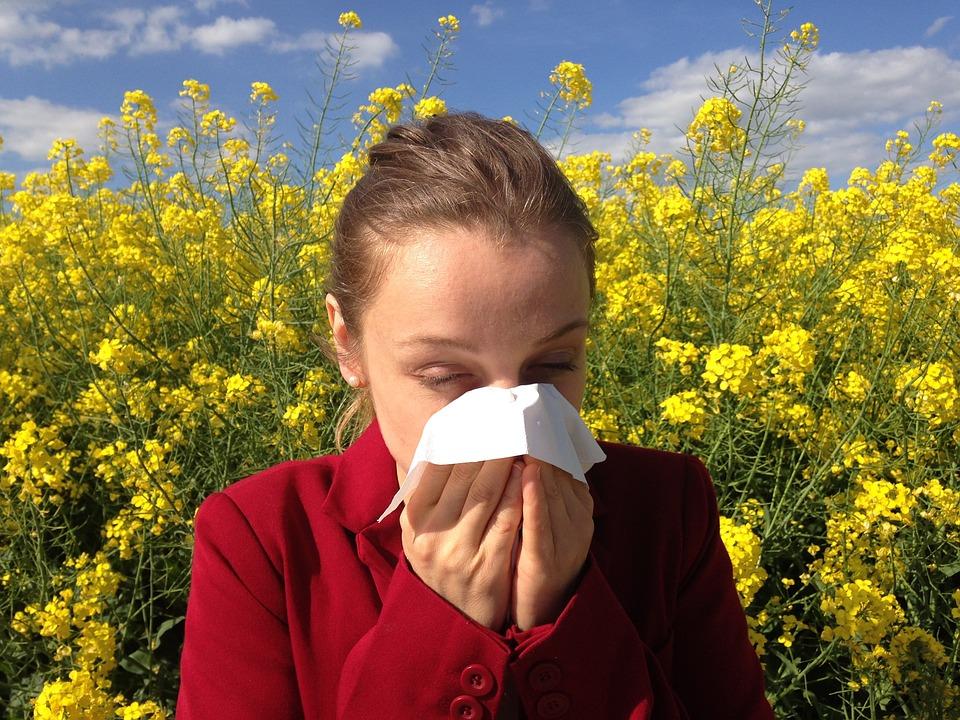 Best Ways to Stave off Seasonal Allergies 1