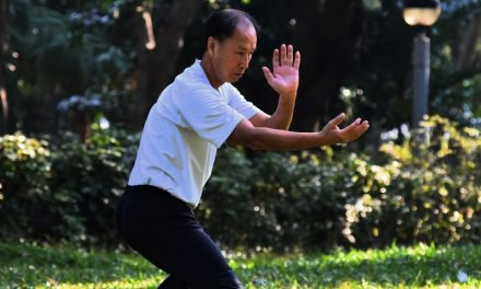 Easy Tai Chi Exercises [Video]