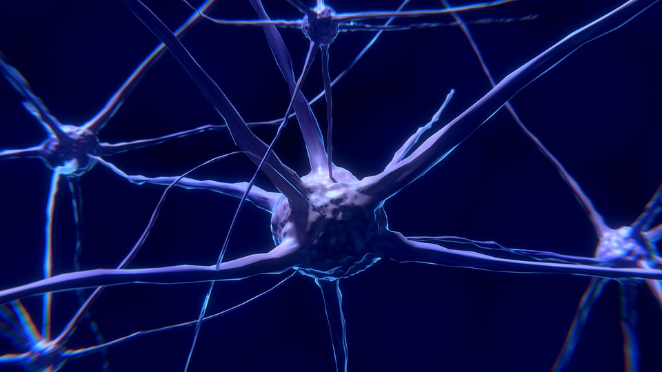 Brain Injury In Seniors: Warning Signs To Watch For