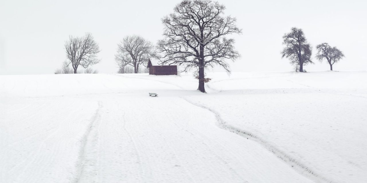 Ways You Can Help Older Adults This Winter