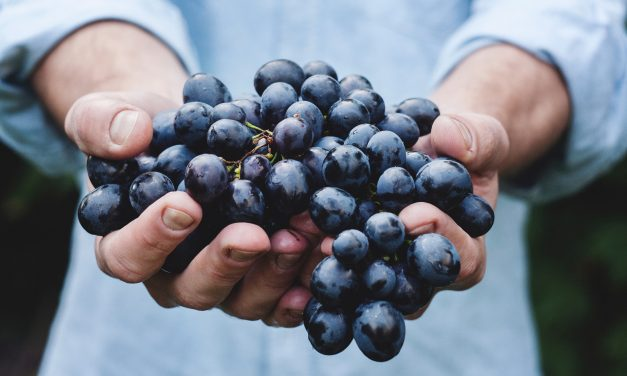 8 Health Benefits of Grapes for Older Adults