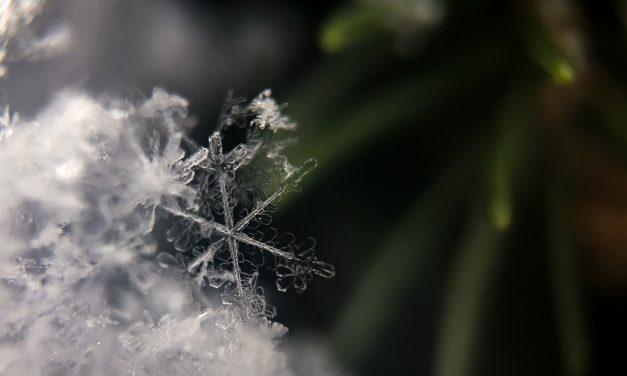 4 Dementia-Friendly Winter Activities